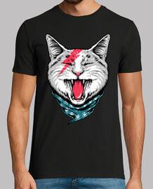 gatto rock