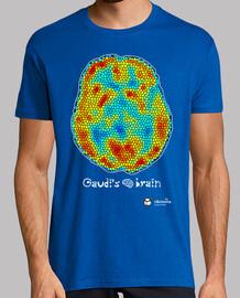 Gaudi's brain