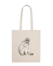 gibilterra scimmia