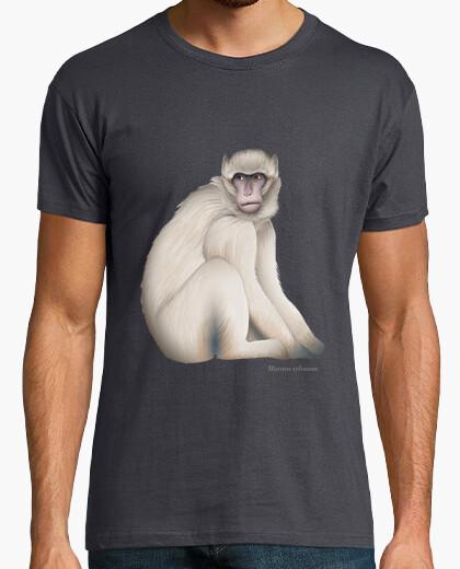 Tee-shirt gibraltar singe