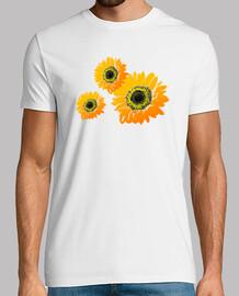 Girasoles composición floral