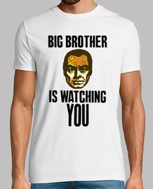 Gran Hermano te vigila a color