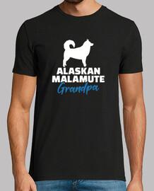 grand-père malamute d39Alaska