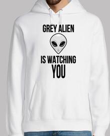 grey alieno