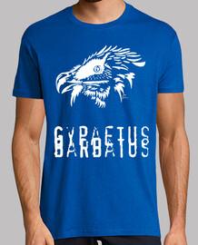 gypaète barbu blanc - gypaetus barbatus
