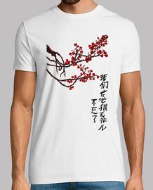 Haikú en chino (chico)