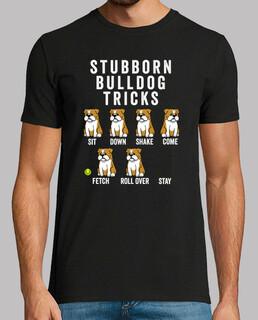 hartnäckige Hundebulldogge Englisch t r