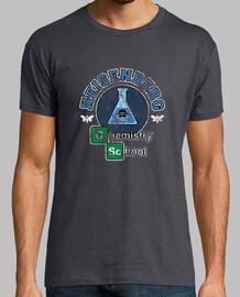 Heisenberg school chemistry