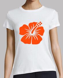 hibisco naranja