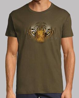 Hidden Tiger / Tigre escondido