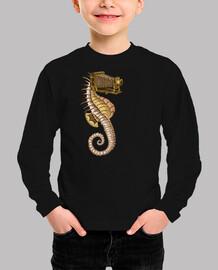 hippocampus camerarum
