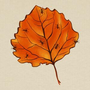 Camisetas hoja de otoño y hormigas en amarillo na
