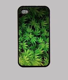 Hojas de marihuana