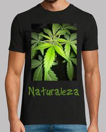 Hombre camiseta marihuana