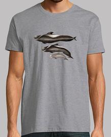 homme tropical blackfish, manches courtes, gris chiné, qualité extra