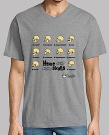 homo skulls