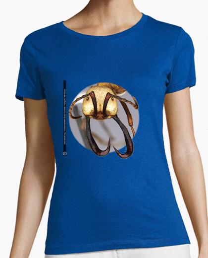 Camiseta Hormiga, Ants, Mirmecología, Eciton burchellii