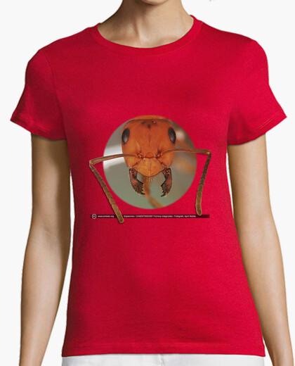 Camiseta Hormiga, Ants, Mirmecología, Formica integroides