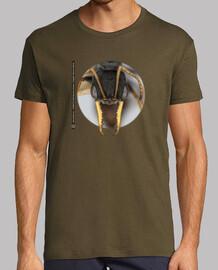 Hormiga, Ants, Mirmecología, Myrmecia pilosula