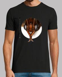 Hormiga, Ants, Mirmecología, Myrmecia regularis