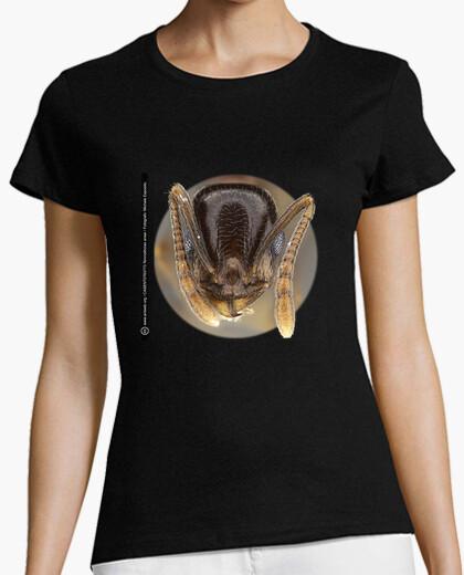 Camiseta Hormiga, Ants, Mirmecología,Temnothorax ansei