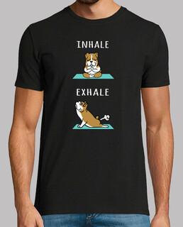 Hund Englisch Bulldogge Yoga einatmen a