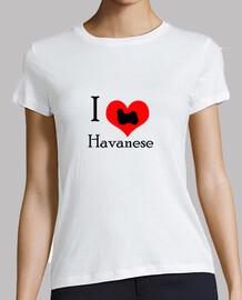 i aime havanese