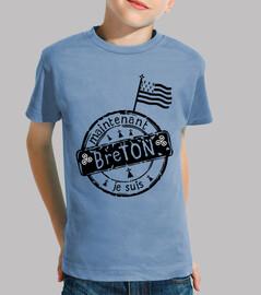 I am Breton flag logo