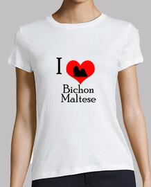 i love bichon maltese