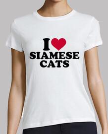 i love cats siamese