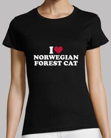 i love chat de la forêt norvégienne