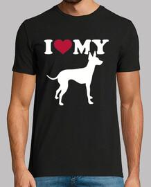 i love mon terrier anglais