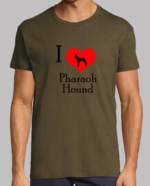 I love pharaoh hound
