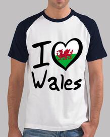 I Love Wales (Amo Gales)