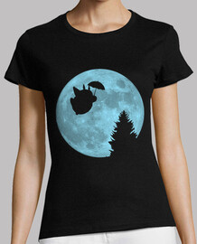 i totoro flying under the moon