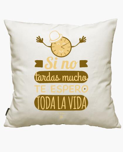 If you do not take too long i wait cushion...