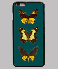 iii farfalle
