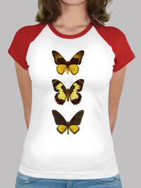 iii papillons