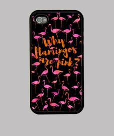 il motivo per cui i fenicotteri are rosa?