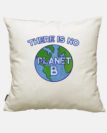 il n39y a pas de planète b