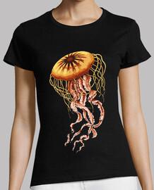 illustration de méduse / animal marin