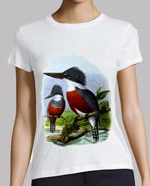 Ilustración antigua - Pájaros