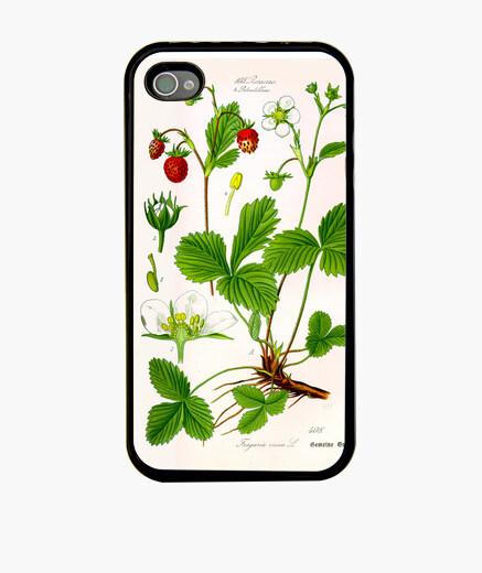 Funda iPhone Ilustración botánica, fresa