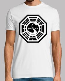 Iniciativa Dharma - Estación Cisne