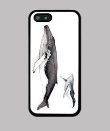 iphone 5 couvercle baleine à bosse et veau