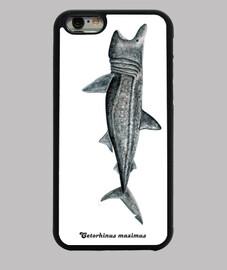iphone 6 cas requin pèlerin (cetorhinus maximus)