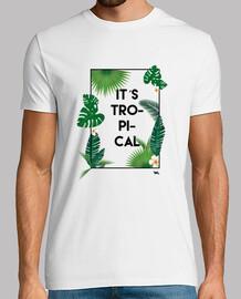 It´s tropical