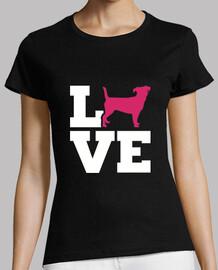 jack russell terrier love