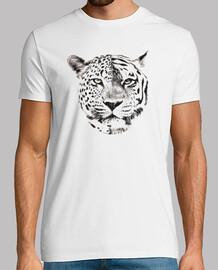 Jaguar-Tigre