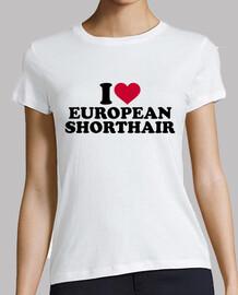 j'aime european shorthair chat